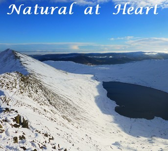 Natural at Heart Holistic Therapies in the Lake District